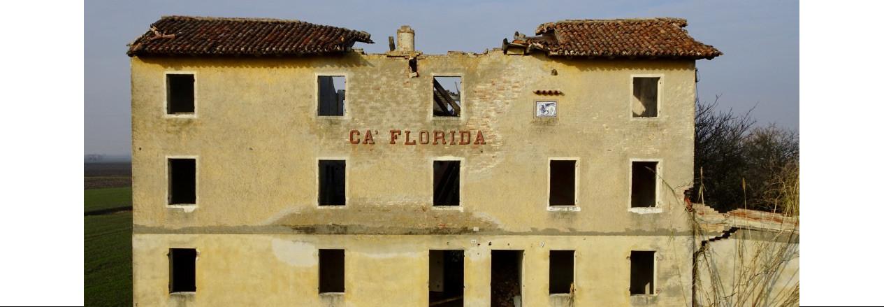 caflorida-cavevisioni.it